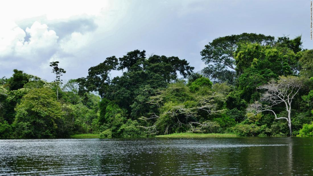 Lake Tarapoto: Piranhas and pink dolphins lure visitors to this Colombian lake